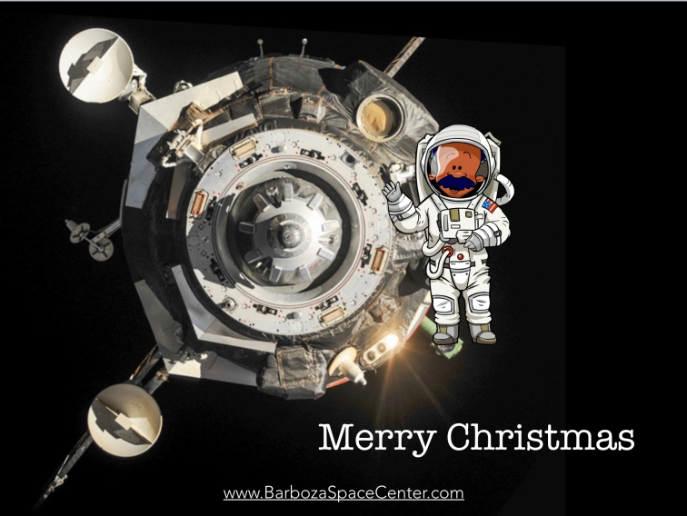 Mary Christmas from Space.jpeg